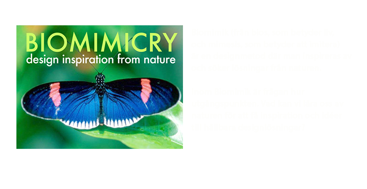 Biommicry